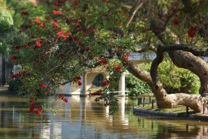 Information you will need about Bosques de Palermo