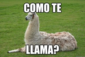 ¿Cómo te llamás? What's your name? in Spanish